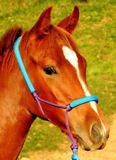 Padded rope halter for MINI/ FOAL or pony Purple and AQUA blue CUTE!!!!