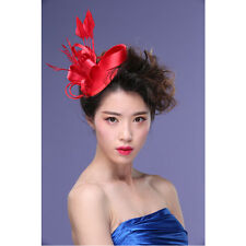 Kentucky Derby Flower Feather Fascinator Clip Cocktail Racing Wedding Party xin