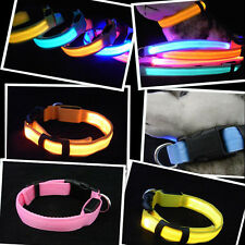 LED Dog Night Safety Pet Flashing Light Adjustable Cat Nylon Collar Leash
