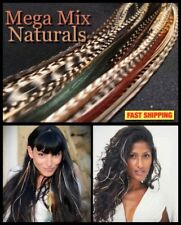Natural Feather Hair Extensions Grizzly 72 Pack 2FREE X-XXXL Beads Tool CraftKit