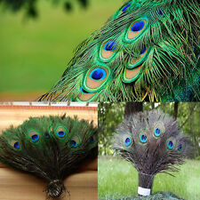 New 10PCS/50PCS Natural Peacock Feathers Home Decoration About Size 10-12 Inches