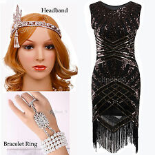 Vintage 1920s Flapper Dress Gatsby Downton Abbey Fringe Sequin 20s Party Costume