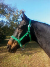 Adjustable Nylon Halter Horse Halter Full Size - 4 Colors Available NEW