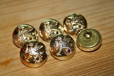 6x Wessex Regiment (volunteers) Military Buttons 20mm Reenactment