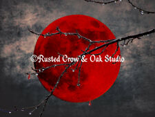 Modern Blood Red Moon Thorn Branch Moon Home Decor Matted Picture Art Print A175