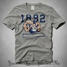 NEW ABERCROMBIE & FITCH KIDS * A&F Boys vintage mascot Tee T-Shirt Grey M L XL