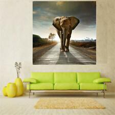20cm-60cm Unframed Canvas Wall Hanging Art Painting Picture Elephant Print