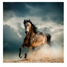 20cm-60cm Unframed Canvas Wall Hanging Art Painting Picture Decor Horse Print