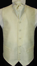 WC042 Mens NEW Ivory/Beige Diamond Pattern Wedding Evening Formal Suit Waistcoat