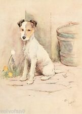 Cecil Aldin Dog Print White Ear and Peter 1912 01/15