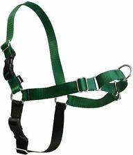 Easy Walk Harness in Green/Black