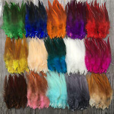 Wholesal!50/1000pcs beautiful high quality rooster feathers 4-6 inches/10-15 cm