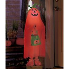 Halloween Decoration Lighted Color Changing Pumpkin Kid Jack Haunted House Decor