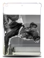 BOSTON TERRIER DOG 4 HARD CASE COVER FOR APPLE IPAD AIR
