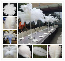Wholesale 100pcs White High Quality Natural OSTRICH FEATHERS 6-28inch /15-70 cm