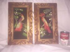 2 Bird Feather Pictures Wood Framed Colorful Home Decor Artist Signed Folk Art