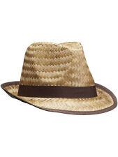 Adults Brown Band Summer Straw Fedora Hat Costume Accessory