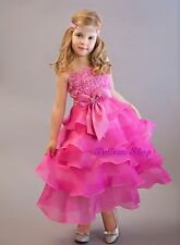 Holiday Wedding Flower Girl Pageant Party Formal Occasion Dress Size 2T-9 FG136