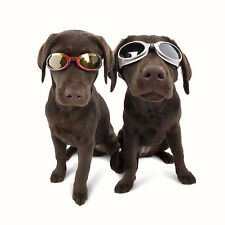 Doggles UV Sunglasses Dogs ILS Goggles Shades Protective Pet Fashion Eye-wear