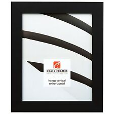 "Craig Frames Modern,1.25"" Single Gallery Black Picture Frame"