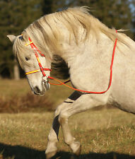 **HORSE SIZE** Any 2 Color ENGLISH BRIDLE & REINS Beta Biothane Trail Endurance