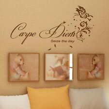 Carpe Diem Seize the Day Wall  Art Quotes / Wall Stickers / Wall Decals