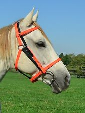 * Horse SIze * ANY 2 COLORS MIX n Match Quick Change HALTER BRIDLE Headstall