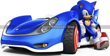 Choose Size: SONIC The Hedgehog RACE CAR WALL STICKERS Removable DECAL VINYL