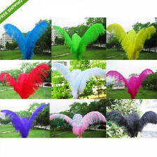 Wholesale!10pcs 6 -22 inch high quality natural ostrich feathers