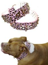 Pink Leopard Studded  Leather Dog Collar S M L XL -Staffy Big Girl Spiked