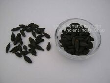 Himej Fruit, Terminalia Chebula Retz., Indian Raw & Whole Herbs