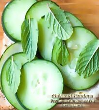 CUCUMBER MINT Fragrance Oil - Fresh garden cucumber blended with the scent of...