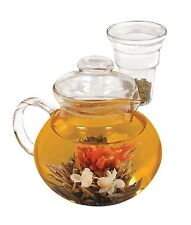 Primula Borosilicate Tea Pot and Mug for Primula Tea Pods