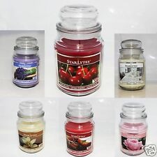 YANKEE CANDLE STYLE STARLYTES Apothecary 18oz -MANY  ***Christmas Gift pack***