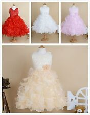 Princess flower Girl dress lace party wedding birthday tutu ball gown layered 3D