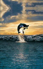 Free Willy Killer Whale Giant Poster - A0 A1 A2 A3 A4 Sizes