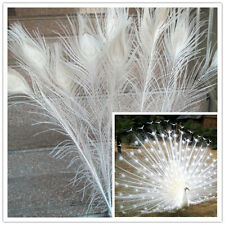 Beautiful white natural peacock feathers 75-80 cm 30-32 inches Free shipping