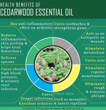 Ambrosial Cedarwood Essential Oil 100% Pure Organic Natural