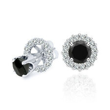 3 Carat Black Diamond Solitaire Stud Pair Earrings Halo Jackets 14K White Gold