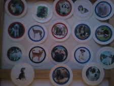 VARIOUS PHOTOS OF DOGS SEALED IN A TAX DISC (SALE IS FOR ONE)