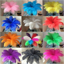 Wholesale 10/50/100pcs High Quality Natural OSTRICH FEATHERS 10-12 inch/25-30cm