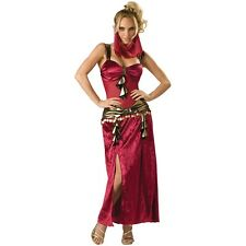 Genie Costume Adult Sexy Harem Girl Belly Dancer Halloween Fancy Dress