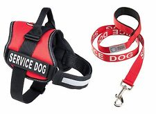 SERVICE DOG IN TRAINING Vest Harness & Matching Leash Set, by Industrial Puppy