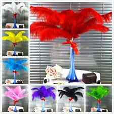 free shipping 10-200pcs High Quality Natural OSTRICH FEATHERS 6-22'inch/15-55cm