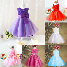 New Baby Girls Pageant Party Wedding Dress Children Floral Roses Princess Dress
