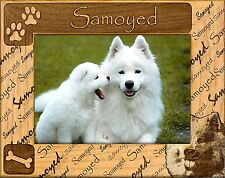 SAMOYED ENGRAVED ALDERWOOD PICTURE FRAME #0147 in four sizes.