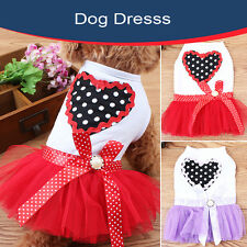 Black Spot SKirt Love Heart Lace Dress Puppy Slip Bubble Dog Dress Apparel