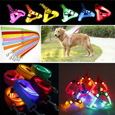 Pet Dog LED Glow Harness Chest Collar Lead Leash Flashing Light Up Training Rope