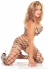 Sheer Nude + Black Spider Web Nylon Body Stocking Sexy Designer Lingerie P1148