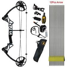 IRQ Compound Bow Package RH 12Pcs Hunting Arrows Set Archery US Limbs 19-70Lbs